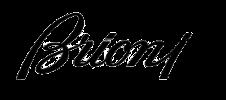 Logo Brioni eyewear